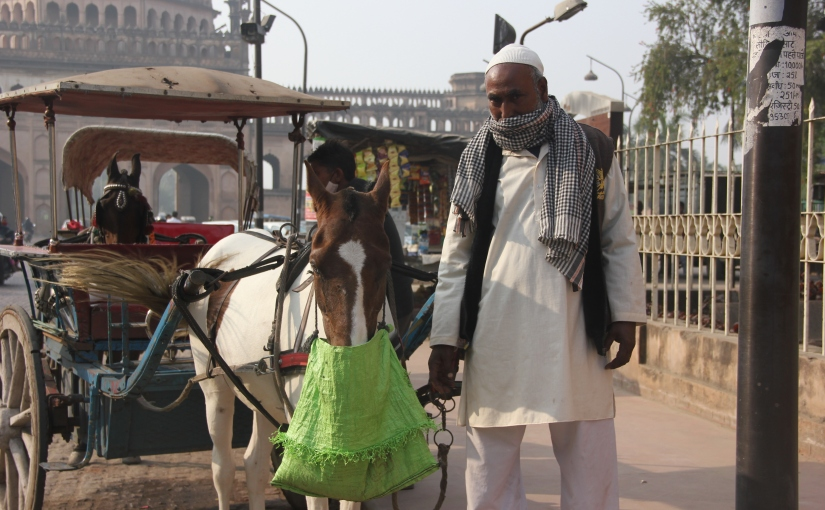 The taangawalas of Lucknow, a slice of Nawabi history, are on the brink of oblivion postlockdown